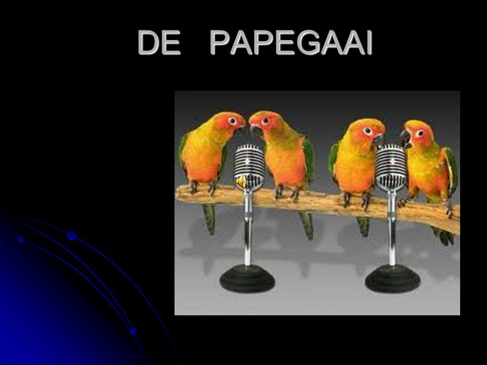 Hier en ver weg Papegaaien zie je in het wild maar ook in Papegaaien zie je in het wild maar ook in dierentuinen.