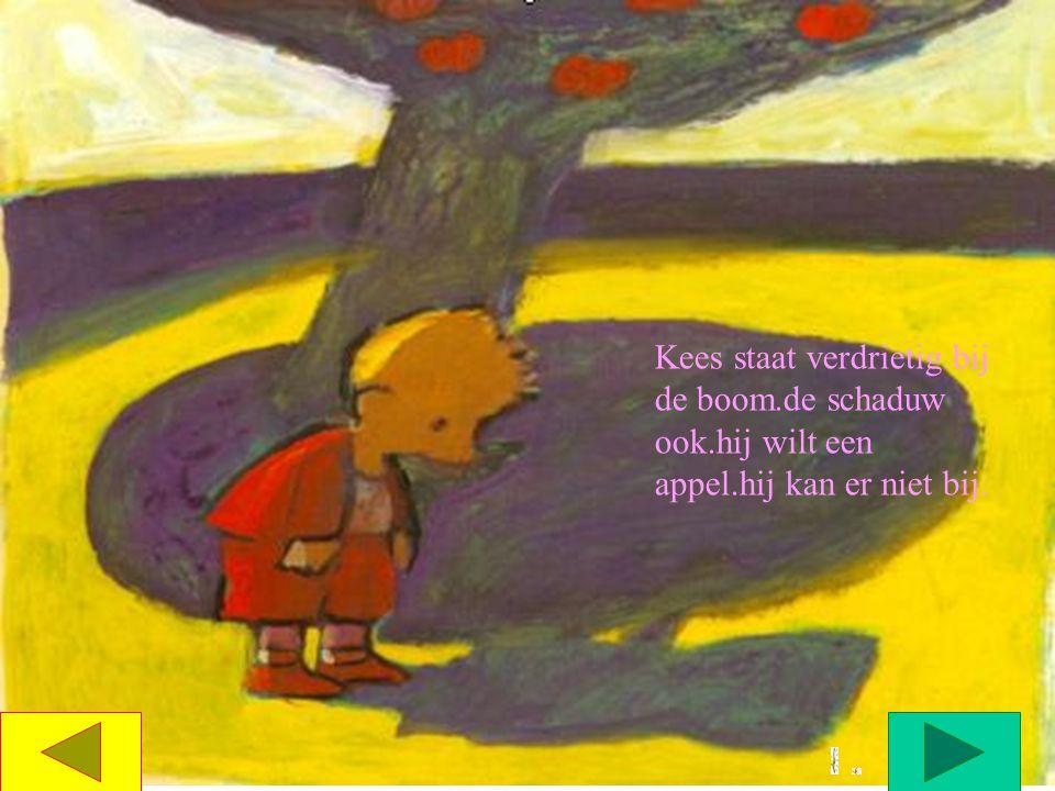 Kees staat verdrietig bij de boom.de schaduw ook.hij wilt een appel.hij kan er niet bij.