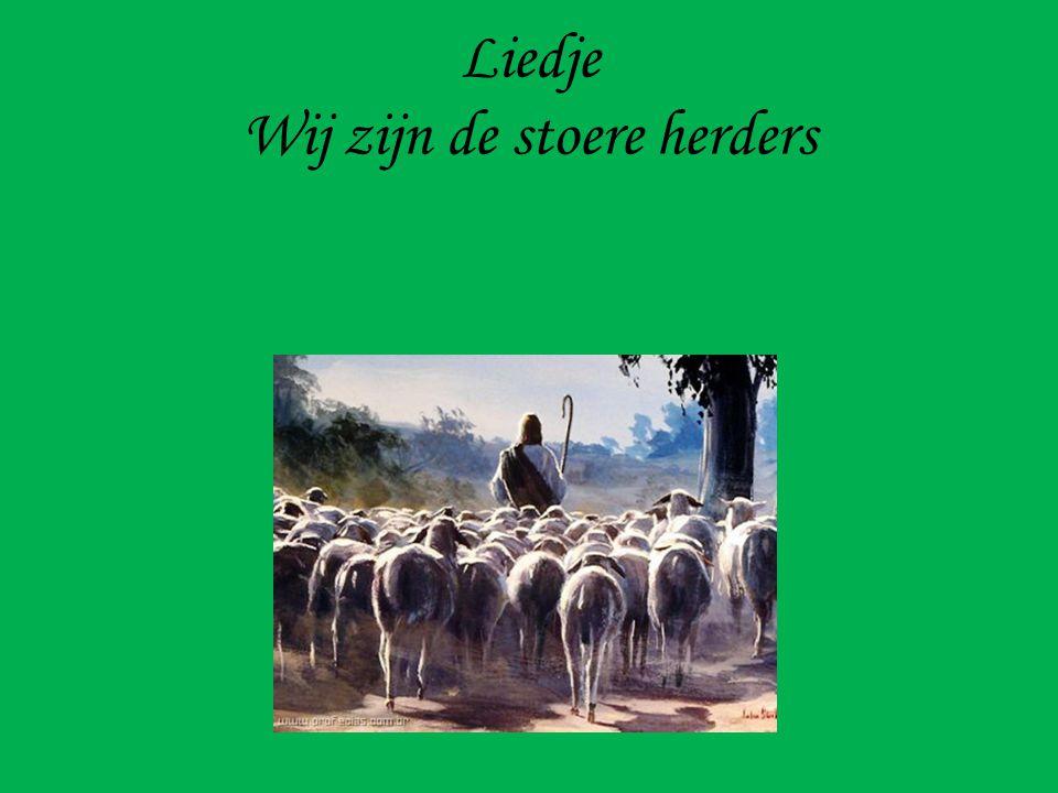 Liedje Wij zijn de stoere herders