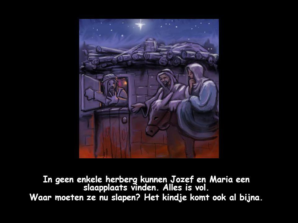 De heldere ster is ook boven Bethlehem blijven staan. Het wordt vast een bijzondere nacht.