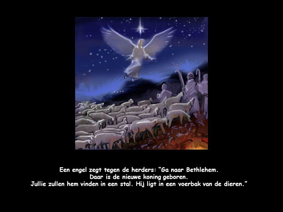 """De engelen brengen een blijde boodschap: """"Een nieuwe koning is geboren! De verlosser voor alle mensen."""""""