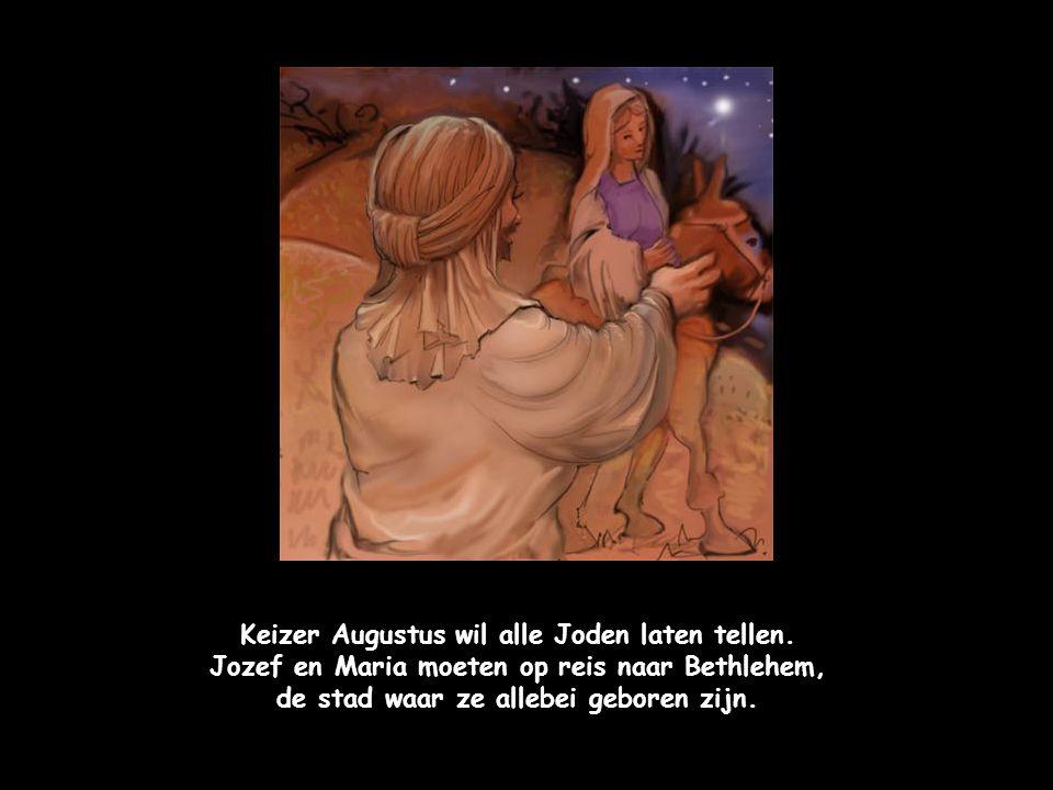 De herders vinden het kindje Jezus in de stal.