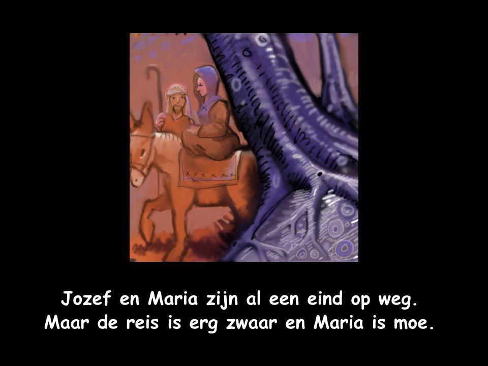 Jozef en Maria zijn al een eind op weg. Maar de reis is erg zwaar en Maria is moe.