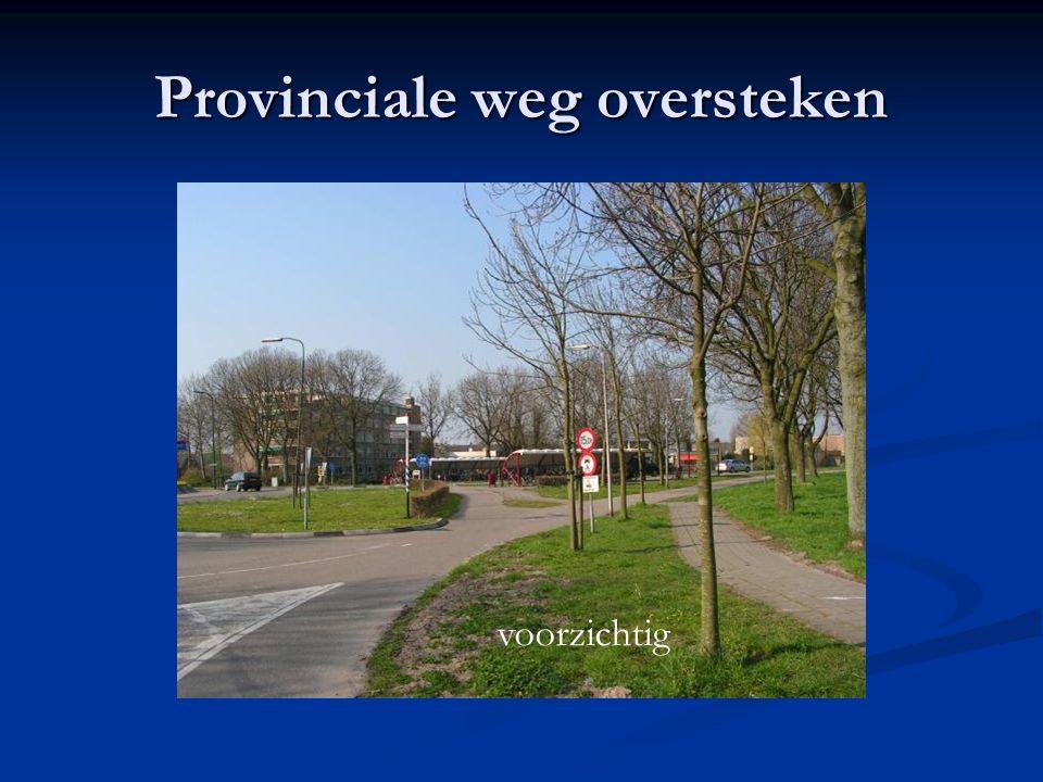Provinciale weg oversteken voorzichtig