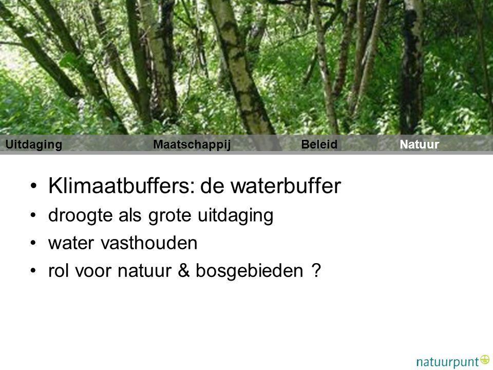 Klimaatbuffers: de waterbuffer droogte als grote uitdaging water vasthouden rol voor natuur & bosgebieden .