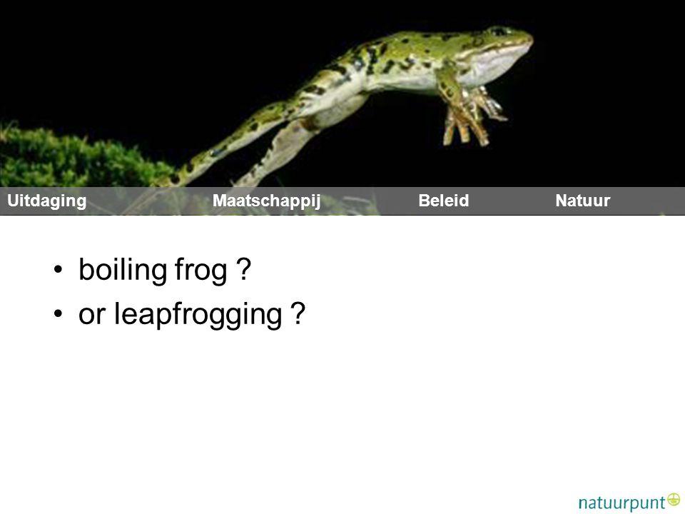 boiling frog ? or leapfrogging ?