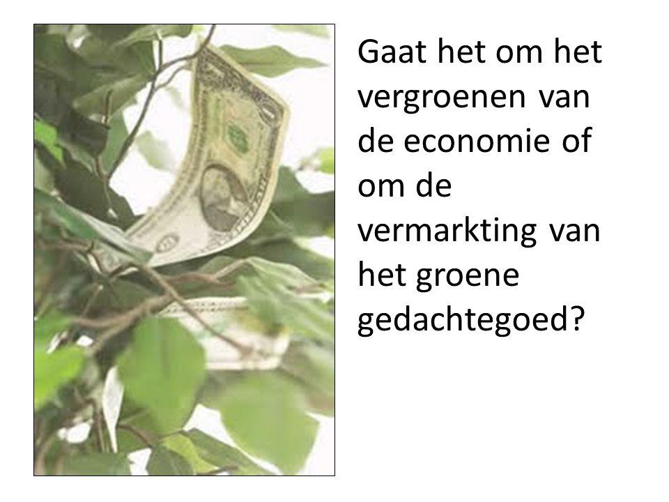 Gaat het om het vergroenen van de economie of om de vermarkting van het groene gedachtegoed?