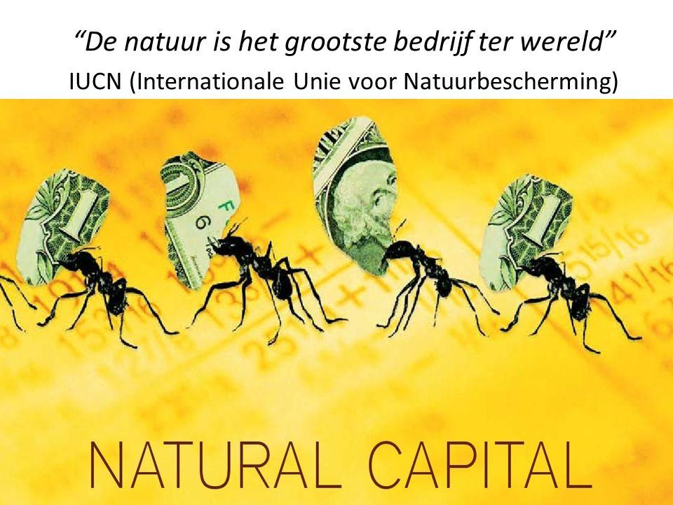 De natuur is het grootste bedrijf ter wereld IUCN (Internationale Unie voor Natuurbescherming)