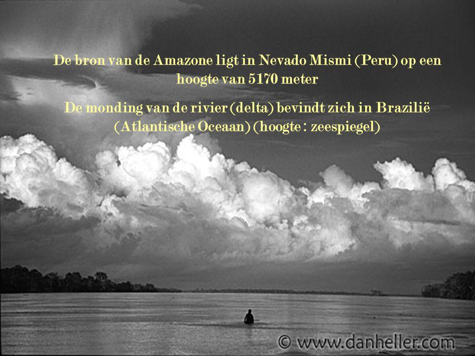 De bron van de Amazone ligt in Nevado Mismi (Peru) op een hoogte van 5170 meter De monding van de rivier (delta) bevindt zich in Brazilië (Atlantische Oceaan) (hoogte : zeespiegel)