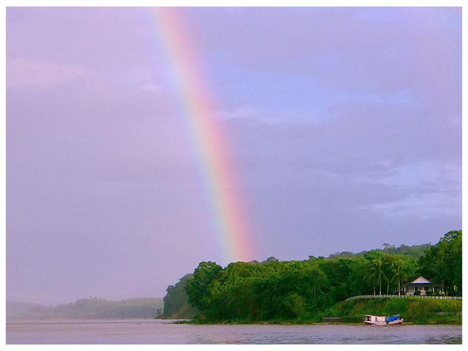 De bron van de Amazone ligt in Nevado Mismi (Peru) op een hoogte van 5170 meter De monding van de rivier (delta) bevindt zich in Brazilië (Atlantische