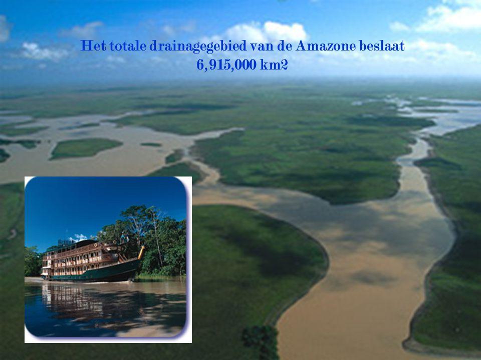 Het totale drainagegebied van de Amazone beslaat 6,915,000 km2