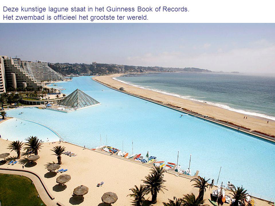 Deze kunstige lagune staat in het Guinness Book of Records. Het zwembad is officieel het grootste ter wereld.