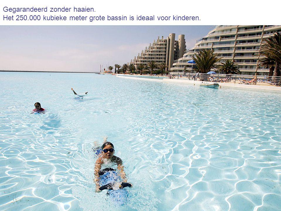 Gegarandeerd zonder haaien. Het 250.000 kubieke meter grote bassin is ideaal voor kinderen.