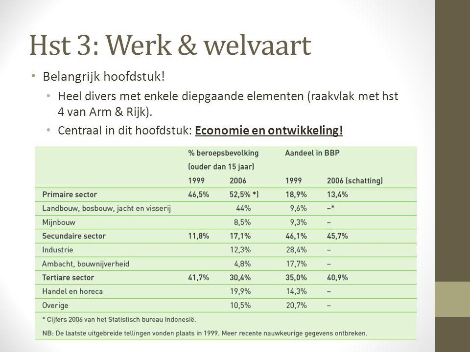 Hst 3: Werk & welvaart Belangrijk hoofdstuk! Heel divers met enkele diepgaande elementen (raakvlak met hst 4 van Arm & Rijk). Centraal in dit hoofdstu