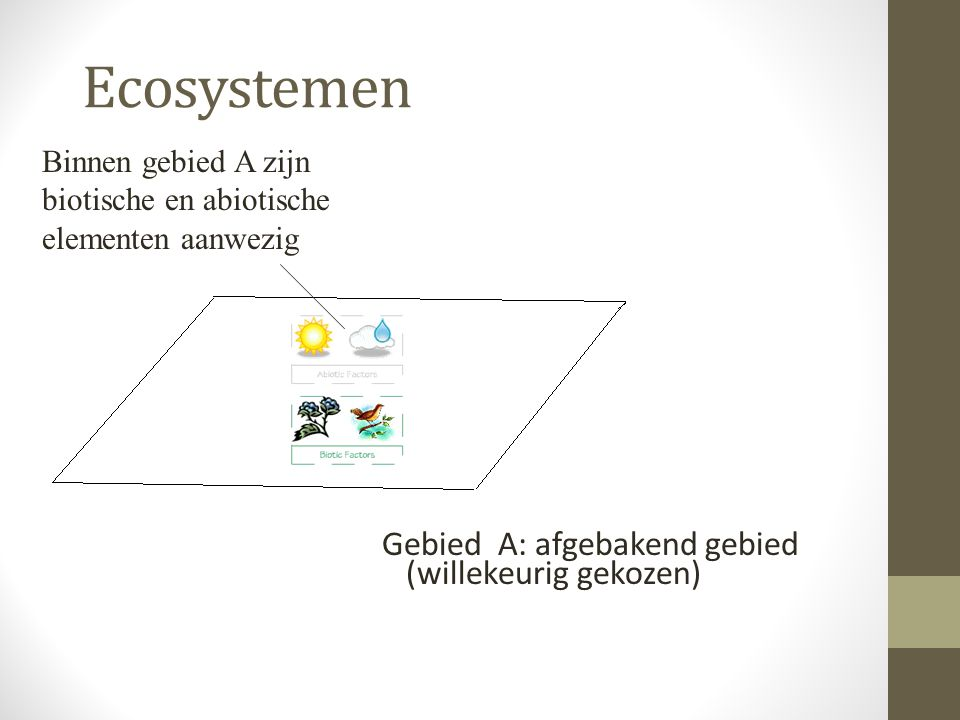 Ecosystemen Gebied A: afgebakend gebied (willekeurig gekozen) Binnen gebied A zijn biotische en abiotische elementen aanwezig