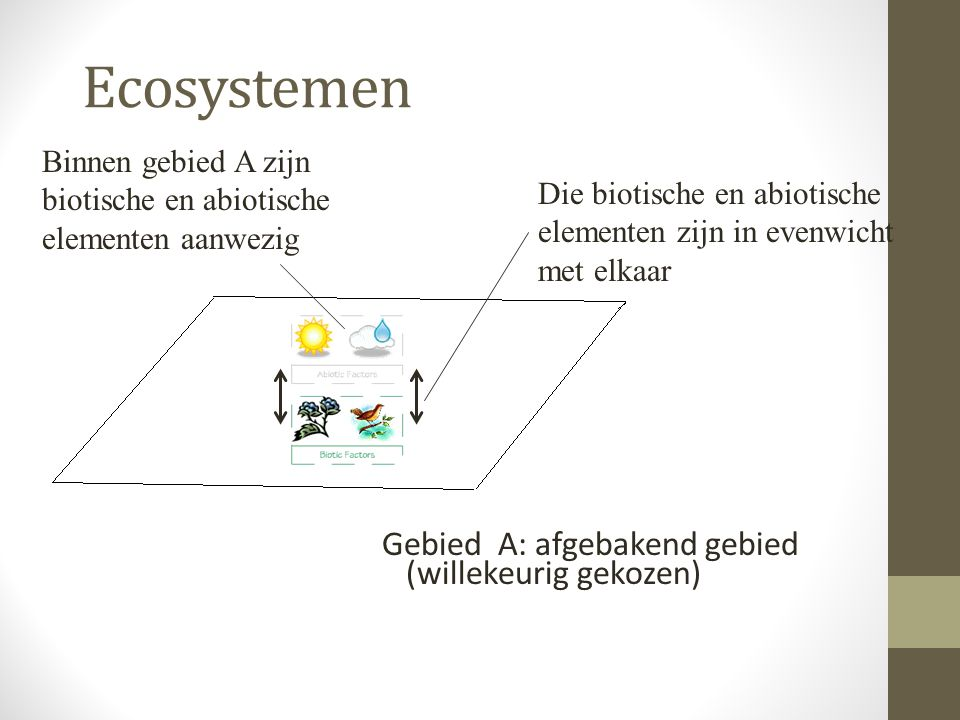 Ecosystemen Gebied A: afgebakend gebied (willekeurig gekozen) Binnen gebied A zijn biotische en abiotische elementen aanwezig Die biotische en abiotis