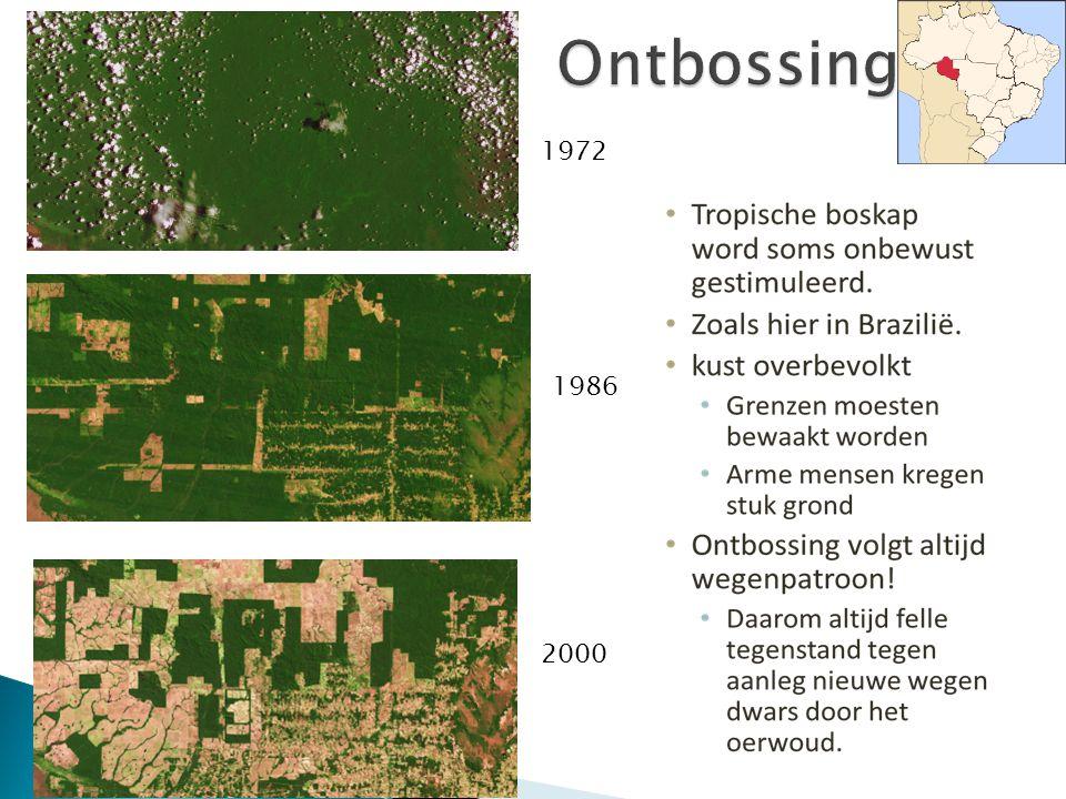  De ontsluiting van het Amazone gebied zorgde voor veel activiteiten (en dus ontbossing van het tropisch regenwoud): ◦ Boeren ◦ Grootgrondbezitters: Extensieve veehouderijen.xtensieve veehouderijen ◦ Commerciële houtkap ◦ Plantages (Soja) ◦ Hydro-elektriciteit ◦ Mijnbouw