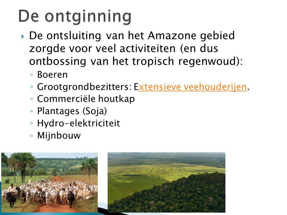  De ontsluiting van het Amazone gebied zorgde voor veel activiteiten (en dus ontbossing van het tropisch regenwoud): ◦ Boeren ◦ Grootgrondbezitters: