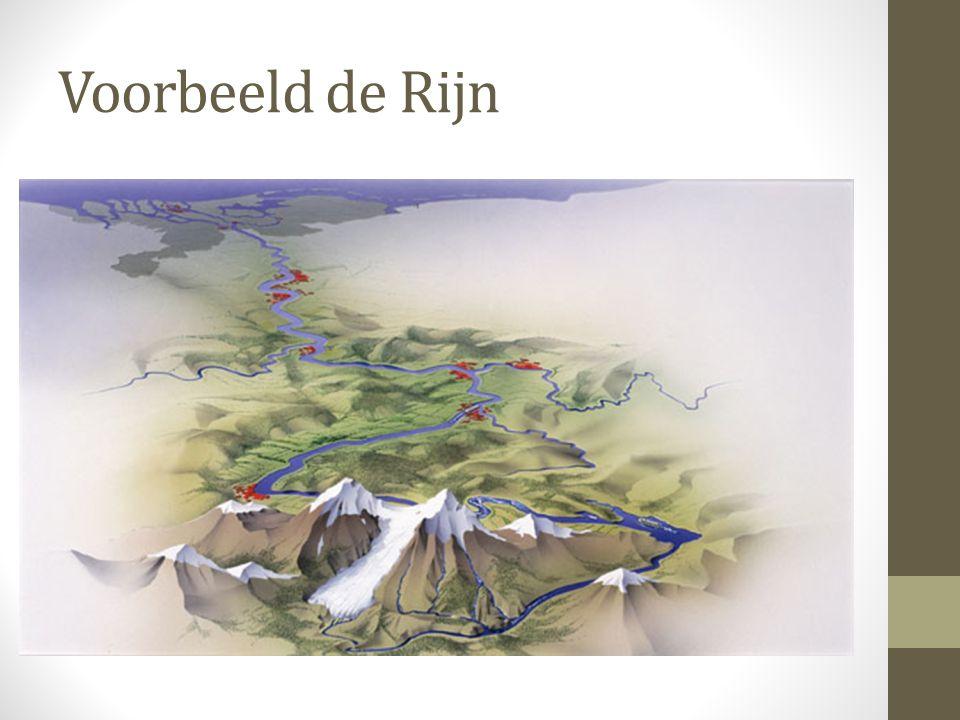 Voorbeeld de Rijn