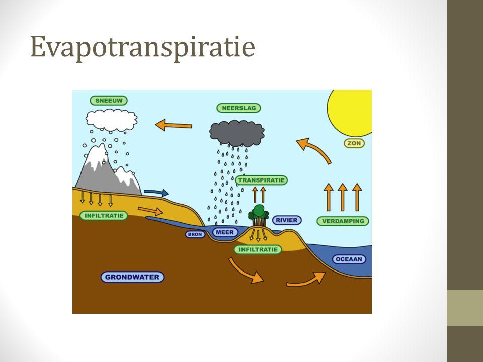 Evapotranspiratie