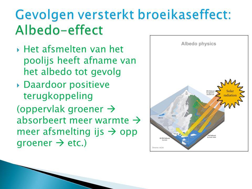  Het afsmelten van het poolijs heeft afname van het albedo tot gevolg  Daardoor positieve terugkoppeling (oppervlak groener  absorbeert meer warmte