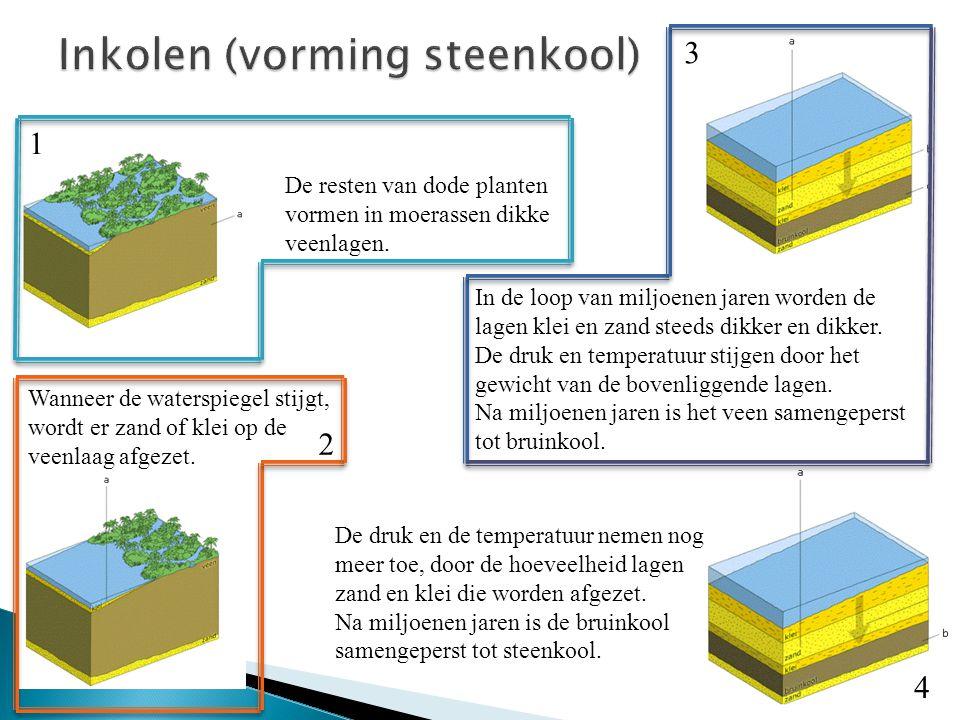De resten van dode planten vormen in moerassen dikke veenlagen. Wanneer de waterspiegel stijgt, wordt er zand of klei op de veenlaag afgezet. In de lo