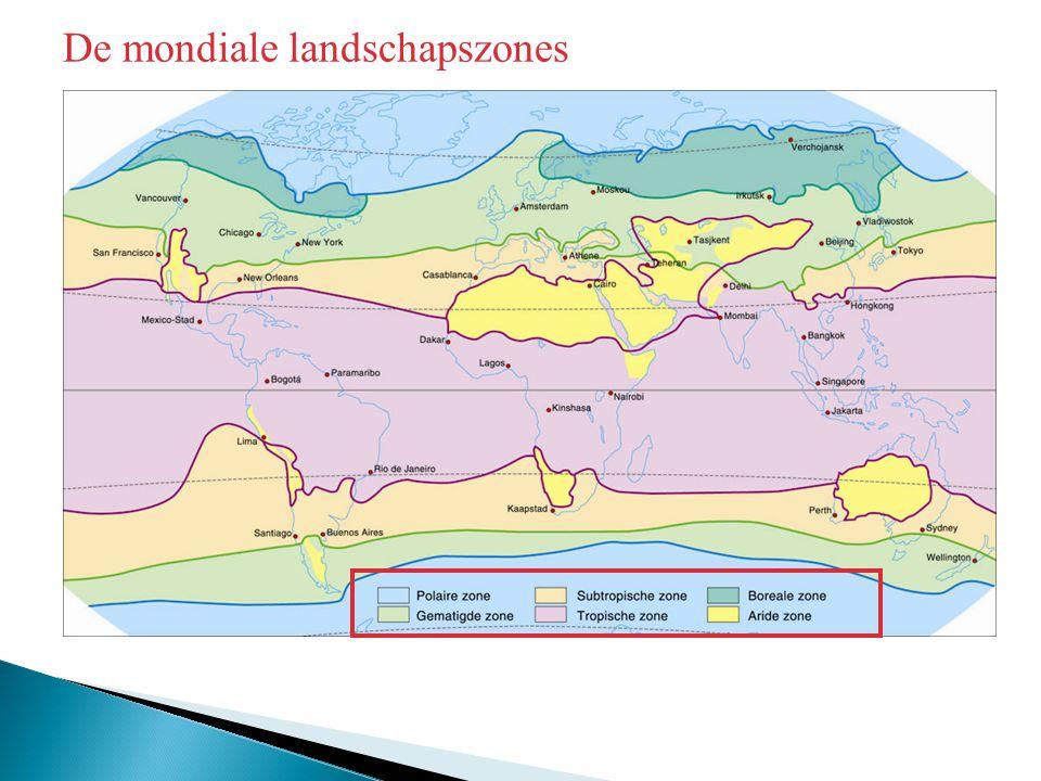 De mondiale landschapszones