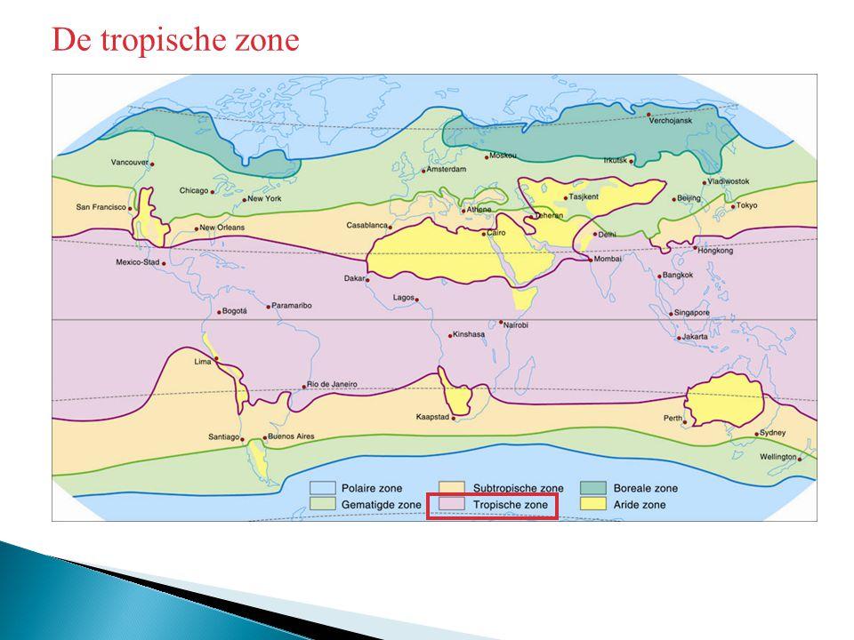 De tropische zone