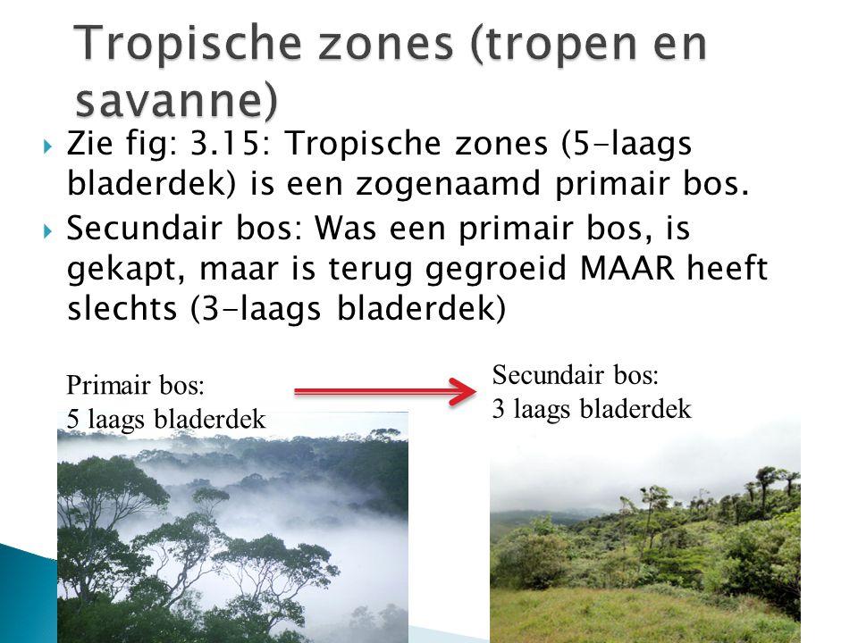  Zie fig: 3.15: Tropische zones (5-laags bladerdek) is een zogenaamd primair bos.  Secundair bos: Was een primair bos, is gekapt, maar is terug gegr