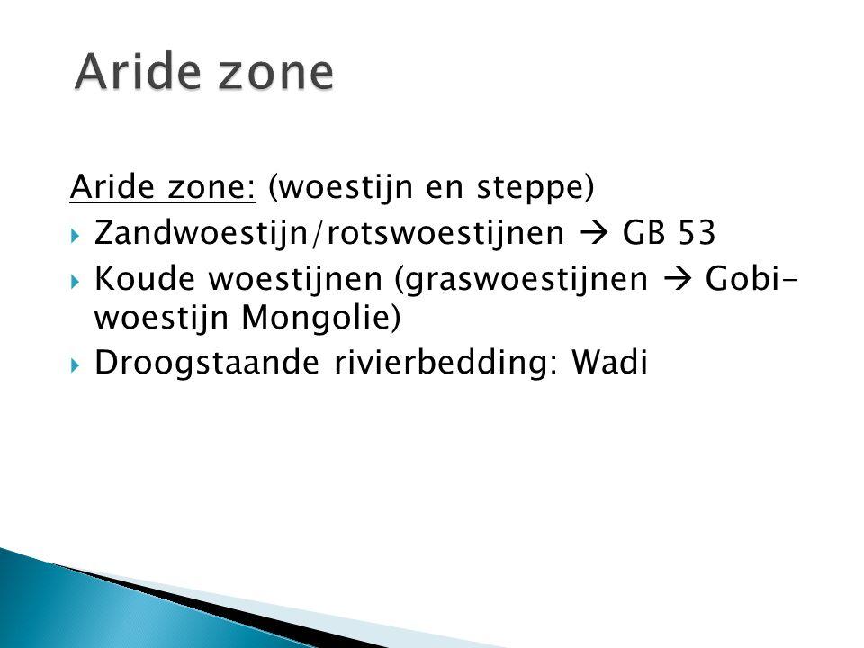 Aride zone: (woestijn en steppe)  Zandwoestijn/rotswoestijnen  GB 53  Koude woestijnen (graswoestijnen  Gobi- woestijn Mongolie)  Droogstaande ri