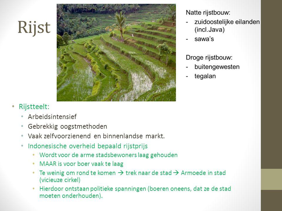 Rijst Rijstteelt: Arbeidsintensief Gebrekkig oogstmethoden Vaak zelfvoorzienend en binnenlandse markt. Indonesische overheid bepaald rijstprijs Wordt