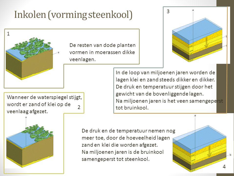 Inkolen (vorming steenkool) De resten van dode planten vormen in moerassen dikke veenlagen. Wanneer de waterspiegel stijgt, wordt er zand of klei op d