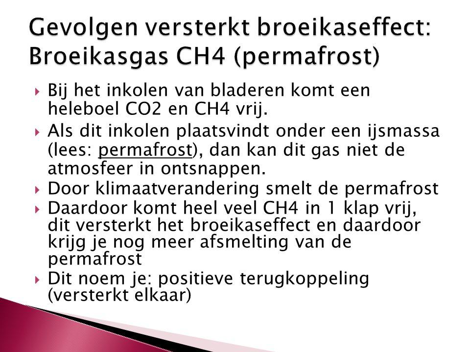  Bij het inkolen van bladeren komt een heleboel CO2 en CH4 vrij.  Als dit inkolen plaatsvindt onder een ijsmassa (lees: permafrost), dan kan dit gas