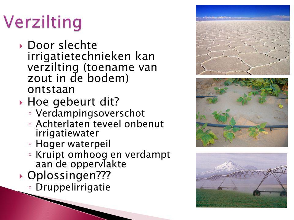  Door slechte irrigatietechnieken kan verzilting (toename van zout in de bodem) ontstaan  Hoe gebeurt dit? ◦ Verdampingsoverschot ◦ Achterlaten teve