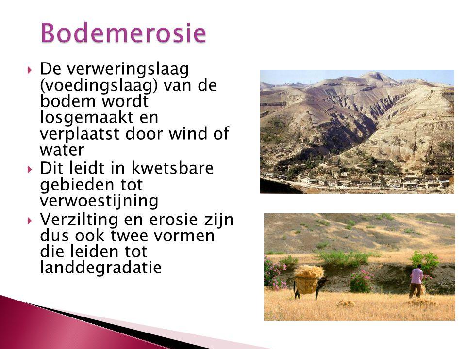  De verweringslaag (voedingslaag) van de bodem wordt losgemaakt en verplaatst door wind of water  Dit leidt in kwetsbare gebieden tot verwoestijning