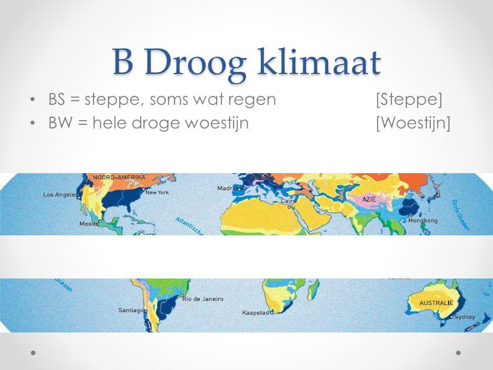 B Droog klimaat BS = steppe, soms wat regen[Steppe] BW = hele droge woestijn[Woestijn]