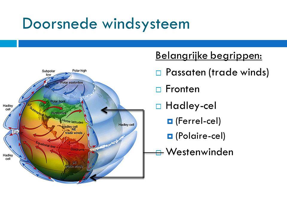 Doorsnede windsysteem Belangrijke begrippen:  Passaten (trade winds)  Fronten  Hadley-cel  (Ferrel-cel)  (Polaire-cel)  Westenwinden