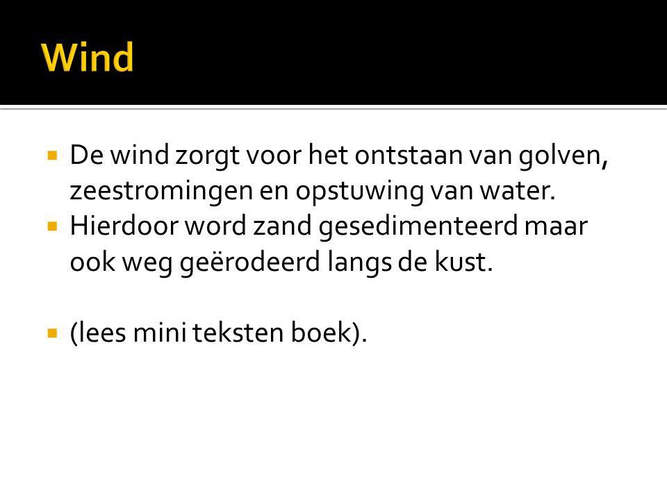  De wind zorgt voor het ontstaan van golven, zeestromingen en opstuwing van water.