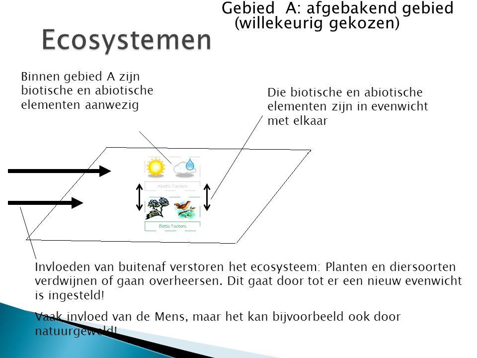 Gebied A: afgebakend gebied (willekeurig gekozen) Binnen gebied A zijn biotische en abiotische elementen aanwezig Die biotische en abiotische elemente