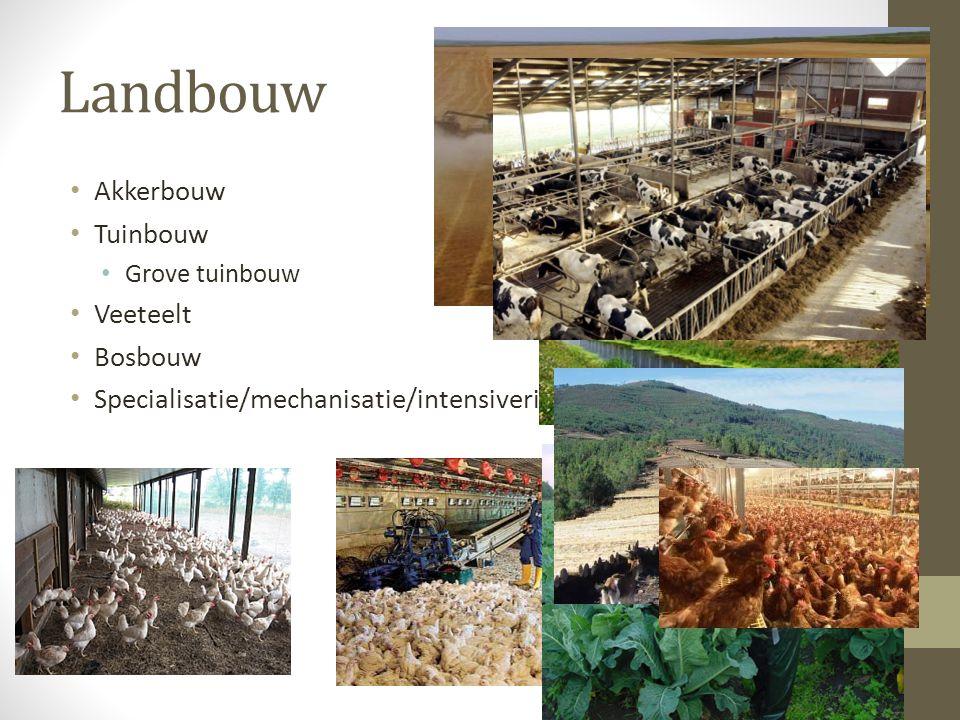 Landbouw Akkerbouw Tuinbouw Grove tuinbouw Veeteelt Bosbouw Specialisatie/mechanisatie/intensivering
