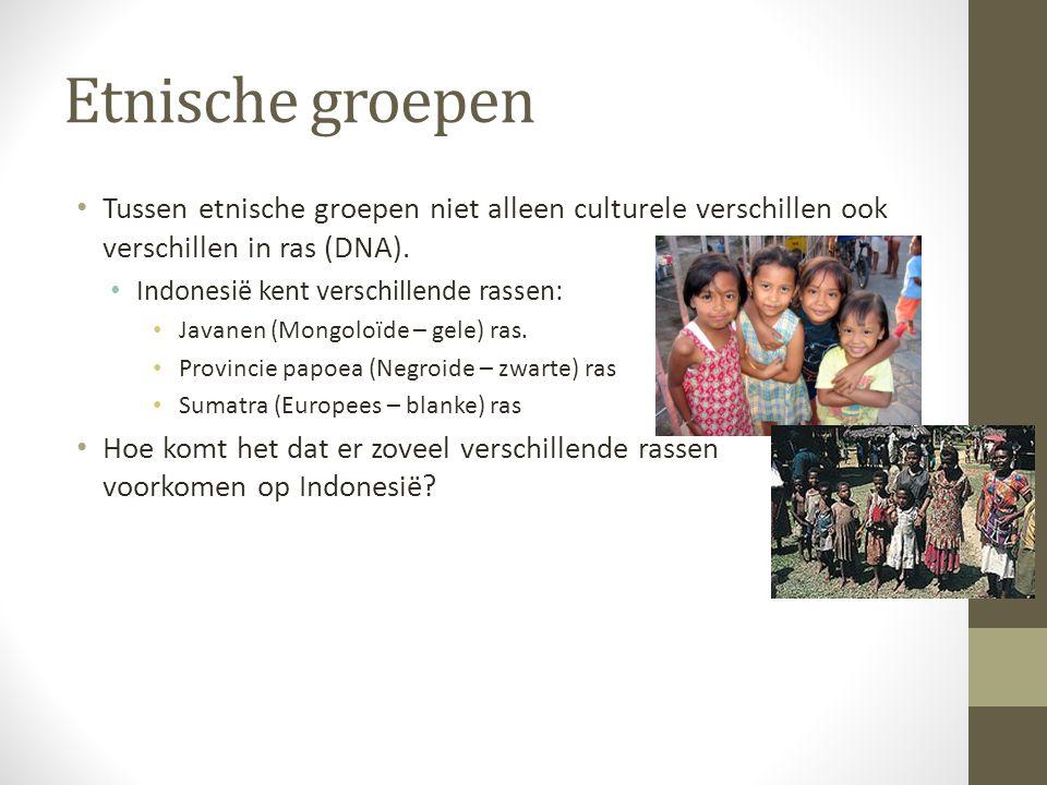 Etnische groepen Tussen etnische groepen niet alleen culturele verschillen ook verschillen in ras (DNA). Indonesië kent verschillende rassen: Javanen