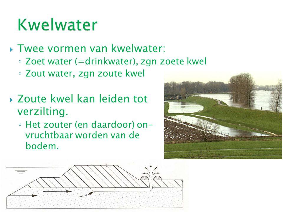  Twee vormen van kwelwater: ◦ Zoet water (=drinkwater), zgn zoete kwel ◦ Zout water, zgn zoute kwel  Zoute kwel kan leiden tot verzilting. ◦ Het zou