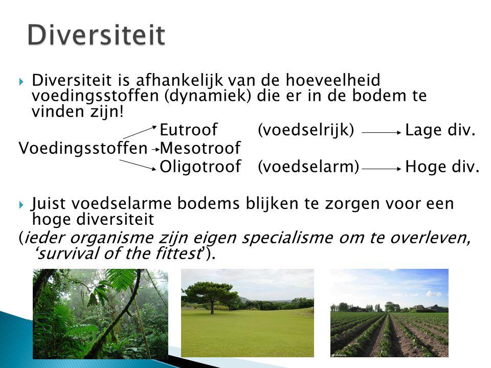 Degradatie wil dus zeggen dat de diversiteit verminderd (ofwel de bodem voedselrijker word) VB: grasveld/akkers Successie wil dus zeggen dat de diversiteit toeneemt (ofwel voedselarme bodem) VB: heide Successie Degradatie