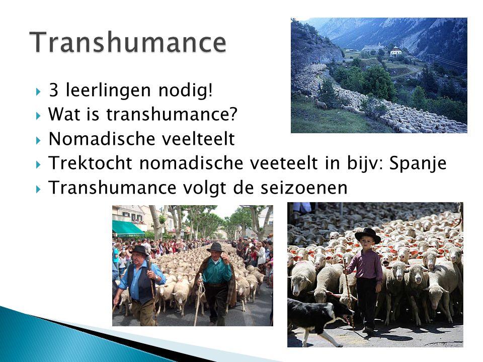  3 leerlingen nodig!  Wat is transhumance?  Nomadische veelteelt  Trektocht nomadische veeteelt in bijv: Spanje  Transhumance volgt de seizoenen