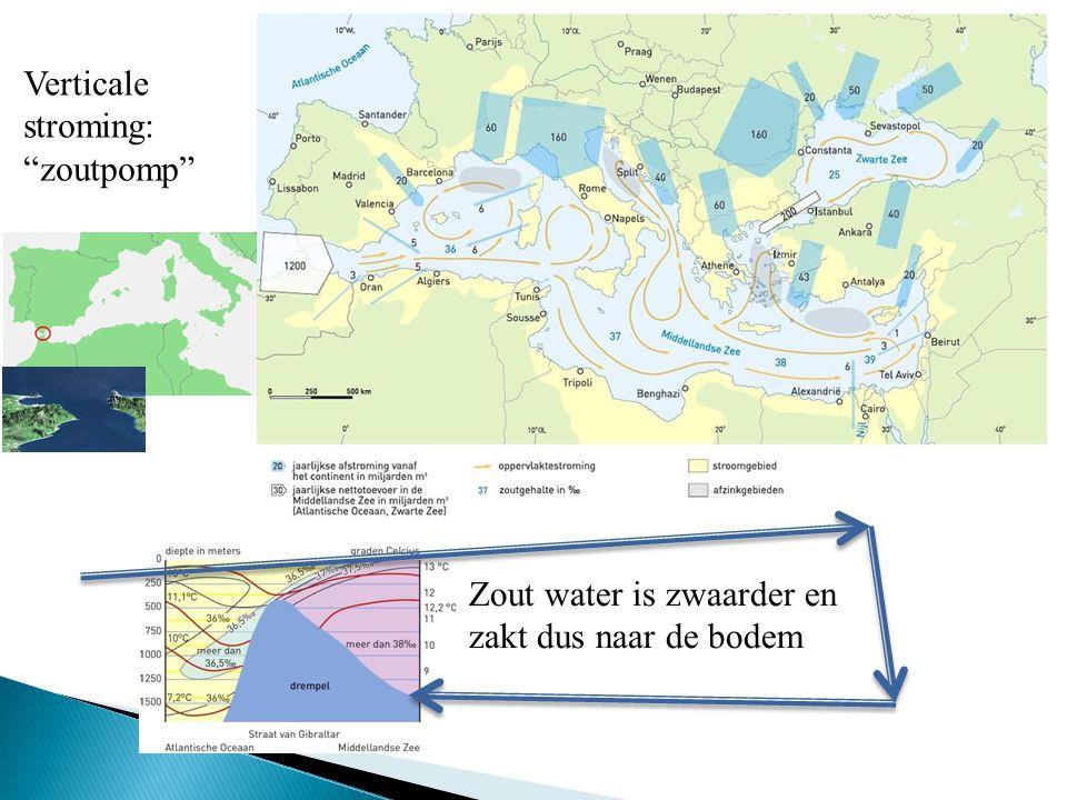 """Zout water is zwaarder en zakt dus naar de bodem Verticale stroming: """"zoutpomp"""""""