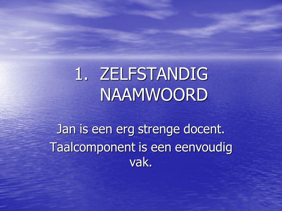 1.ZELFSTANDIG NAAMWOORD Jan is een erg strenge docent. Taalcomponent is een eenvoudig vak.