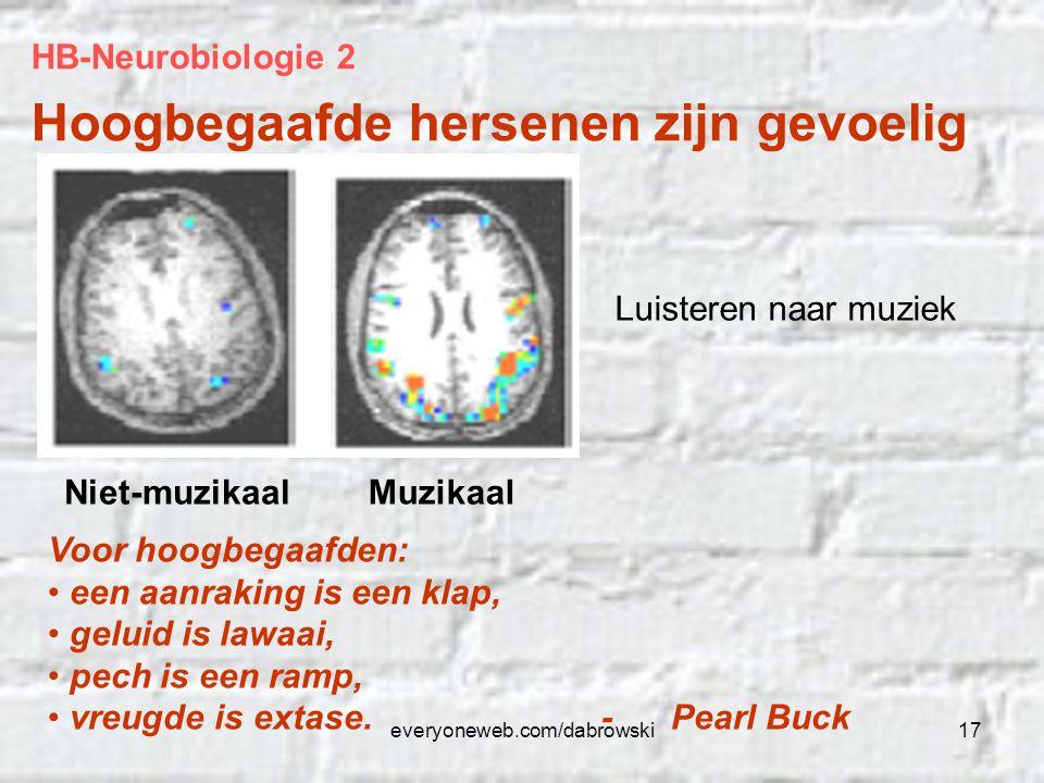 everyoneweb.com/dabrowski17 HB-Neurobiologie 2 Hoogbegaafde hersenen zijn gevoelig Luisteren naar muziek Niet-muzikaalMuzikaal Voor hoogbegaafden: een