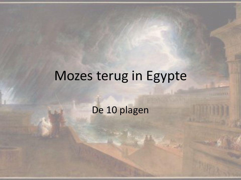 Mozes terug in Egypte De 10 plagen