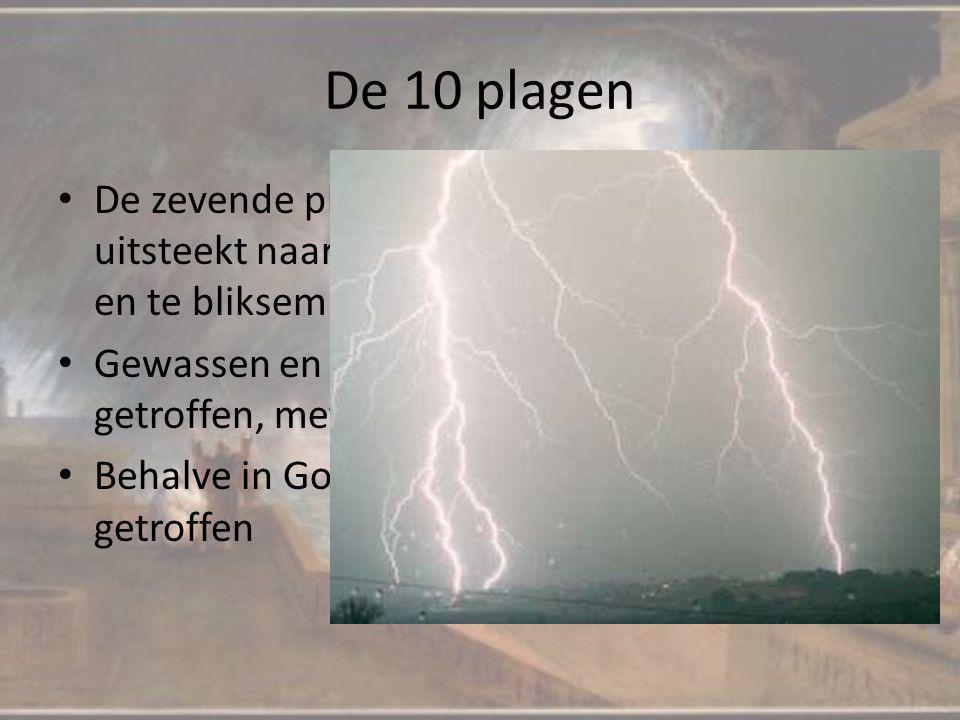 De 10 plagen De zevende plaag hagel, als Aaron zijn hand uitsteekt naar de hemel begint het te hagelen en te bliksem Gewassen en mensen worden door de