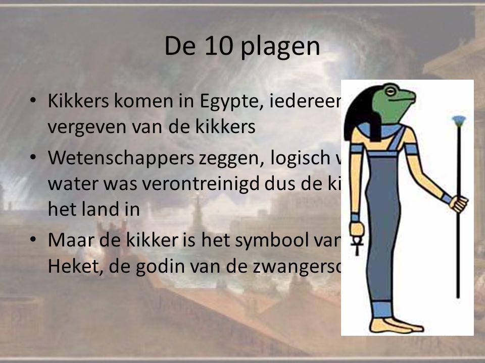 De 10 plagen Kikkers komen in Egypte, iedereen en alles is vergeven van de kikkers Wetenschappers zeggen, logisch want al het water was verontreinigd